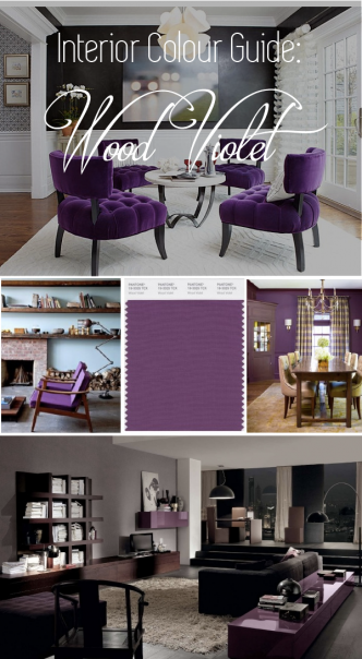Wood Violet Interior Color
