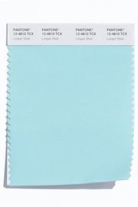 PANTONE 13-4810 Limpet Shell