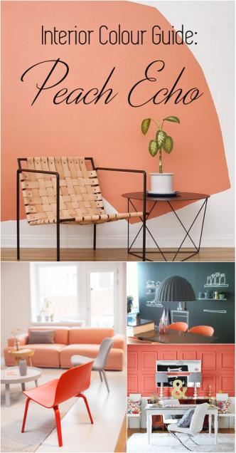 Peach Echo Color Interior