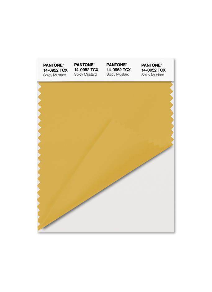 PANTONE 14-0952 Spicy Mustard