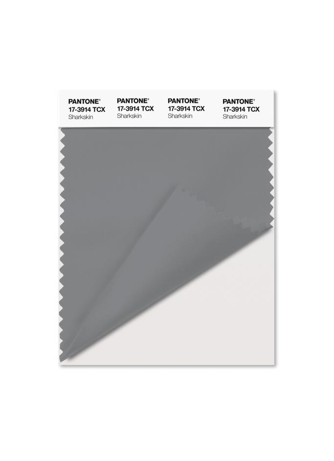 PANTONE 17-3914 Sharkskin